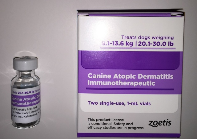 Atopic dermatitis dogs